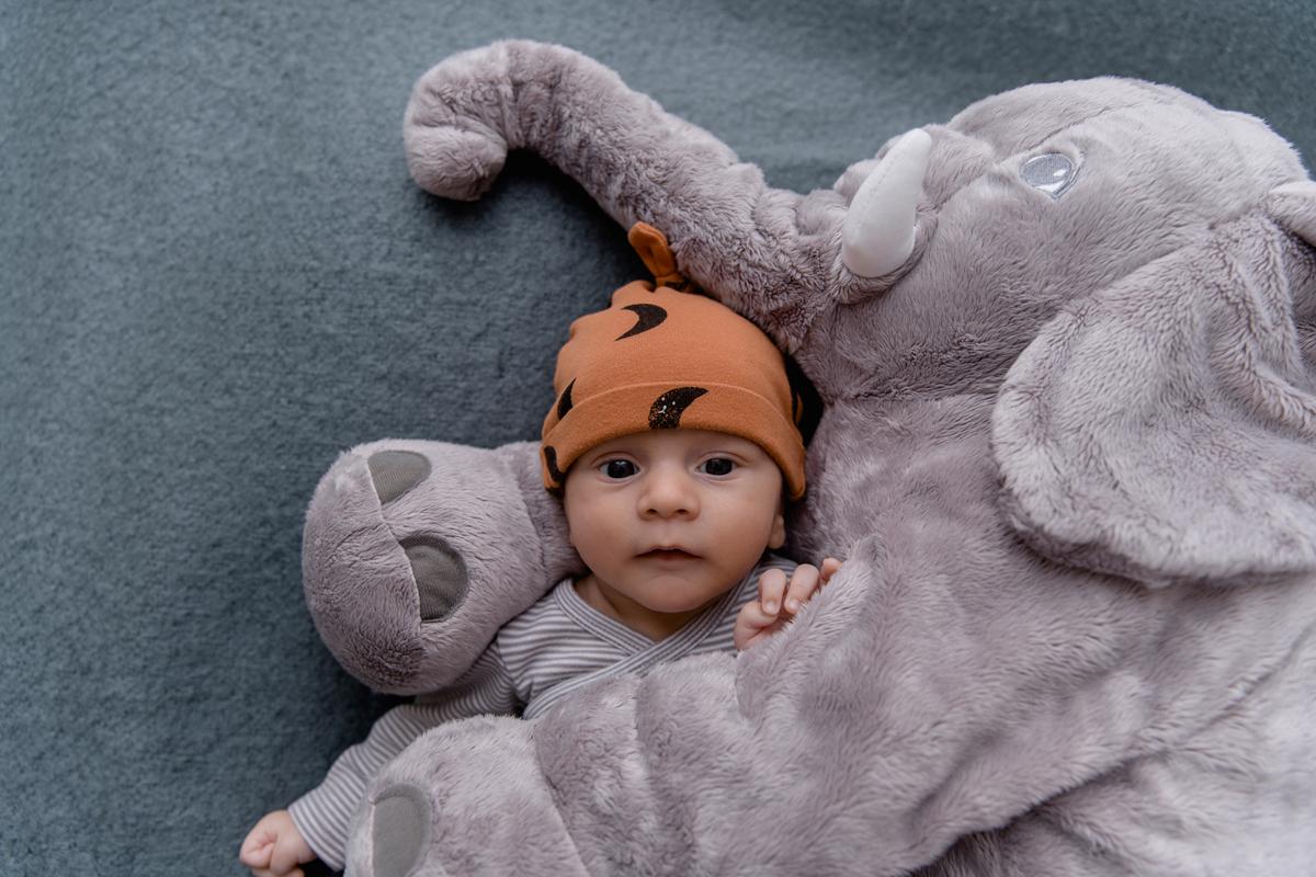 Babyfotos Babyshooting, Babyfotoshooting, Neugeborenenfotos, Neugeborenenshooting, Newbornshoting, Fotoshooting, BAby, FAmilienfotos, Fotografin, Linz, Steyr, Amstetten, Oberösterreich, Niederösterreich